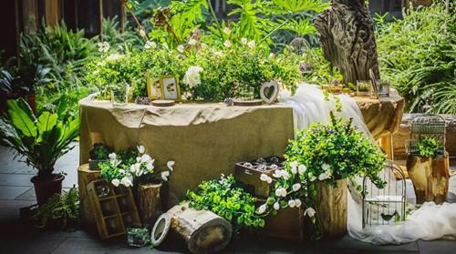 办一场森系婚礼多少钱 森系婚礼有哪些主题