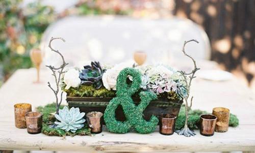 创意的森系苔藓主题婚礼